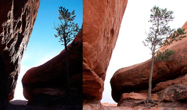 An example of the unchanging nature of the desert: the image on the left was made at a narrow pass on the Squaw Flat trail in 2002. The image on the right was made at the same spot on this trip, more than eight years later.