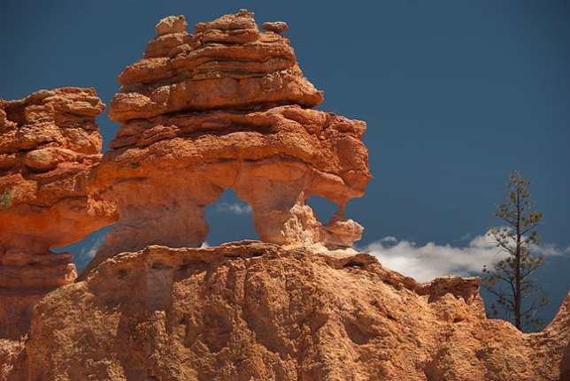 I spotted this cluster of natural arches at the top of a ridge at the Mossy Cave trail at Bryce Canyon National Park.