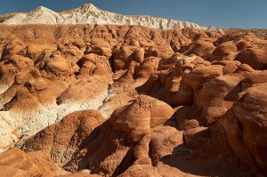 This hoodoo field stands at the end of the Paria Toadstools trail.