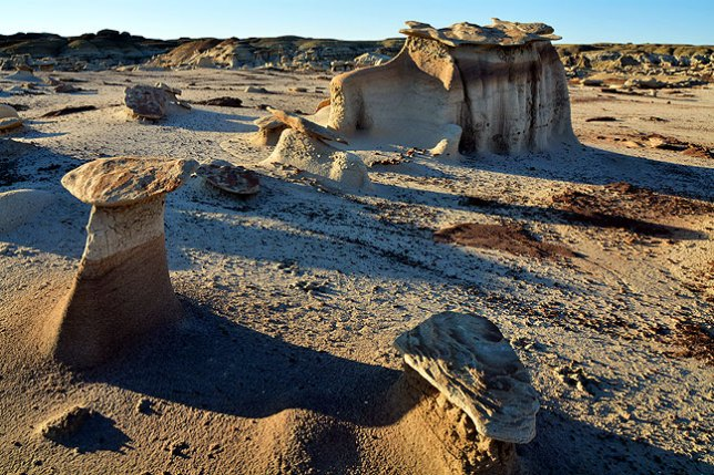 Morning light shines on a hoodoo field at the Bisti Wilderness.