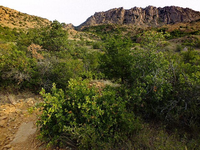 The Wichita Mountains are quite beautiful, as in this image made along the trail early in my hike.