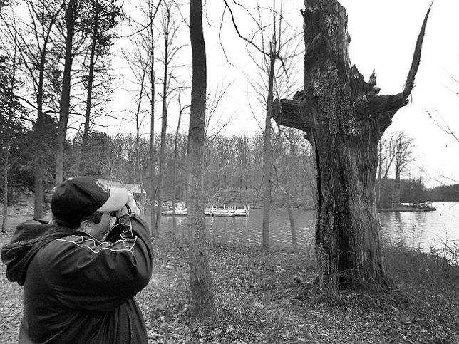 Tom photographs the stump.