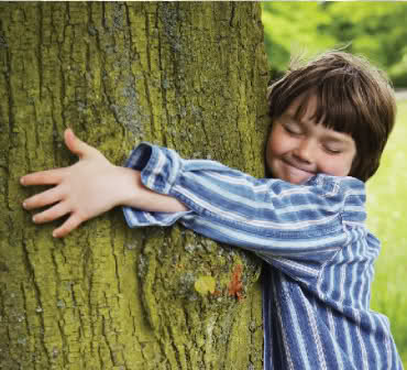 Is it time to hug a tree!