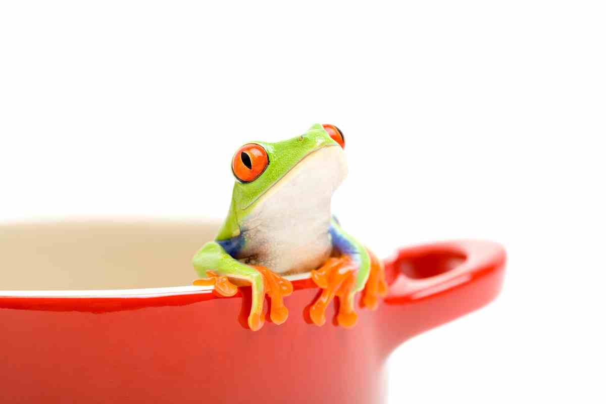 The Boiling Frog Syndrome ?