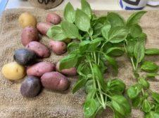 A handful of small potatoes and fresh basil.