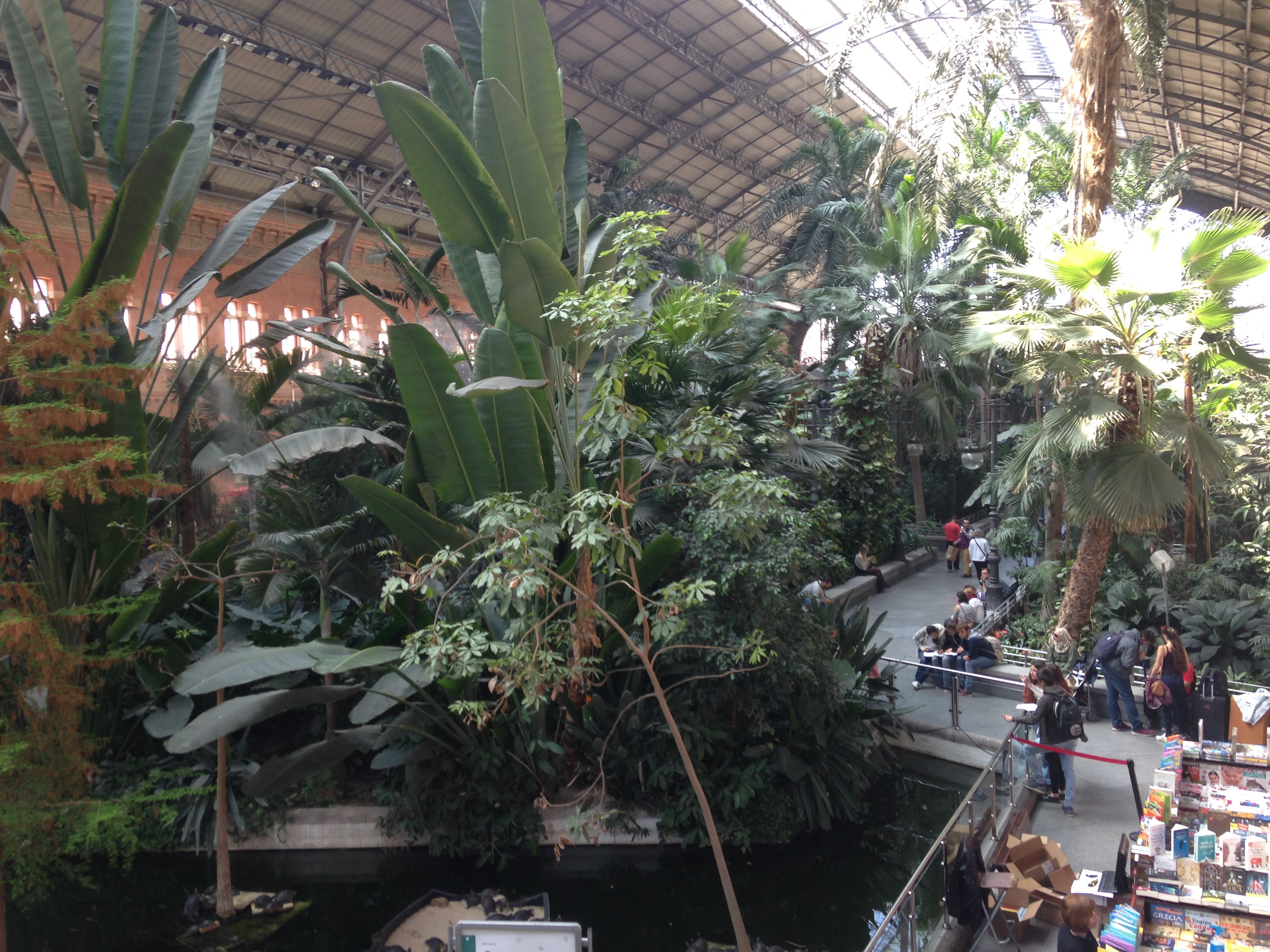 Botanical Gardens in Atocha station – Madrid