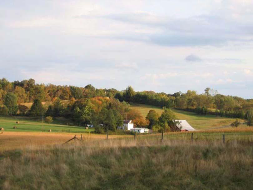 Farmstead xx
