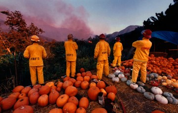 California_Fires-Richard_Hartog-4