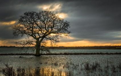 flood-waters_16261989654_o