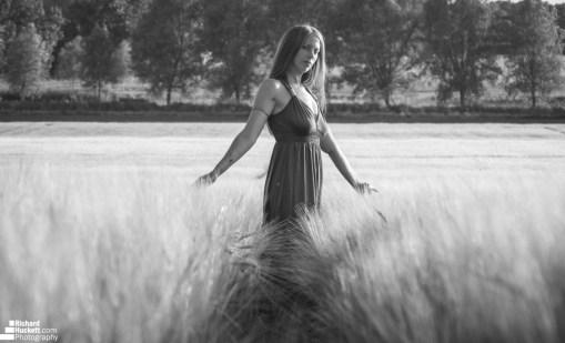 wheat-field_28275154907_o