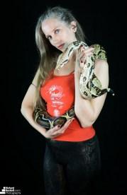 snake-night_44730039664_o