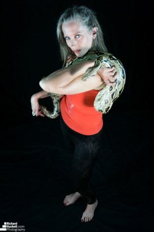 snake-night_44730041244_o