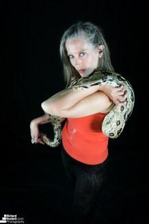 snake-night_44730041344_o