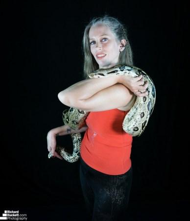 snake-night_45455007901_o