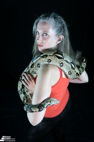 snake-night_45455008031_o
