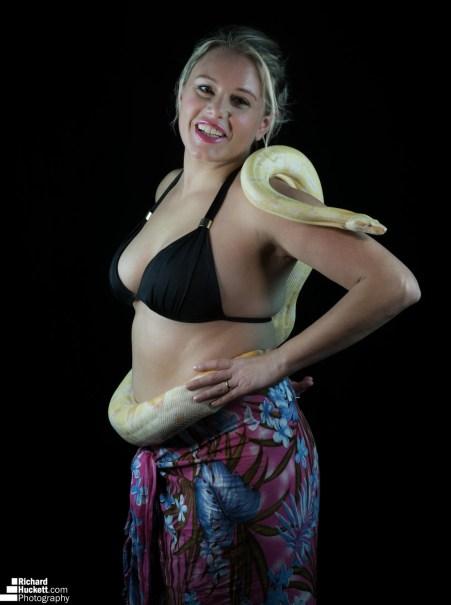 snake-night_45455008461_o