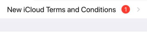iCloud terms and conditions looping