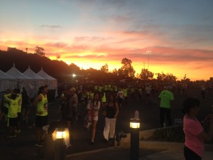 Before the 2015 LA Marathon at Dodger Stadium