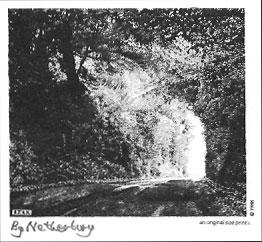 By Netherbury, Dorset