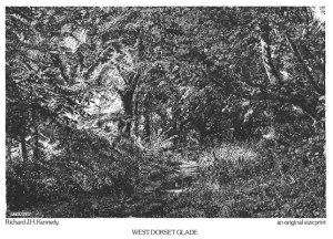 West Dorset Glade