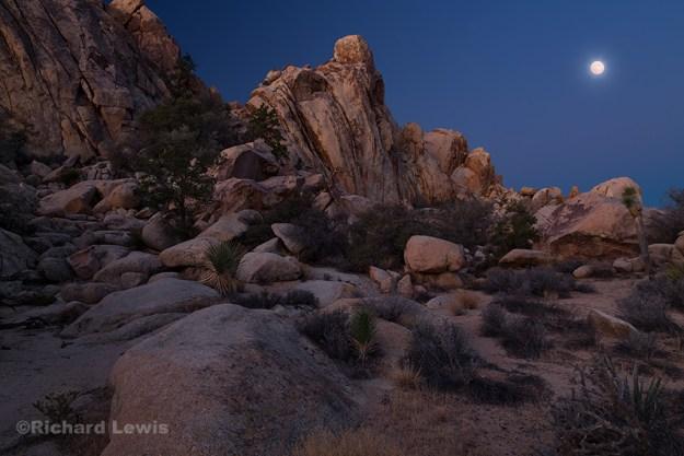 Full Moon at Dawn by Richard Lewis