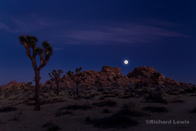 Moonset at Dawn by Richard Lewis