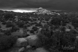 Desert Storm Joshua Tree National Park