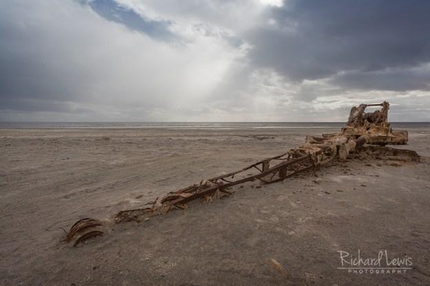 Old Crane On Bombay Beach by Richard Lewis