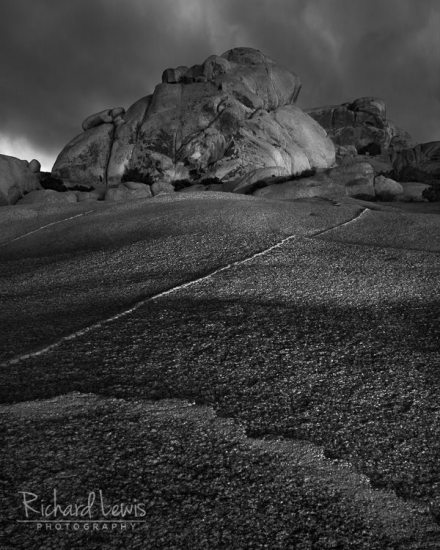Angry Frog Rock in Joshua Tree by Richard Lewis