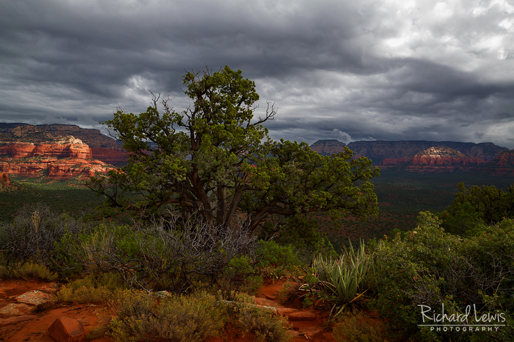 Storm Light On Doe Mountain In Sedona