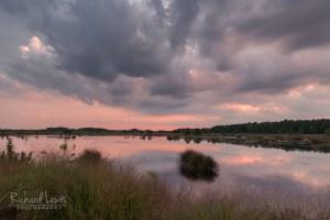 Franklin Parker Preserve Pine Barrens New Jersey