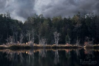 Storm Light on Whitesbog New Jersey Pine Barrens