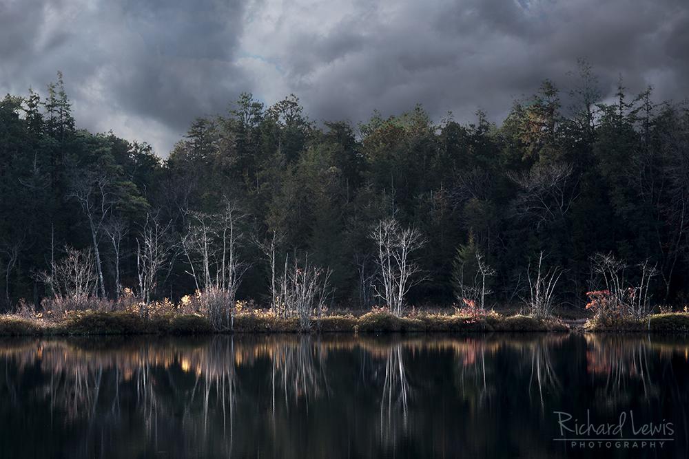 Storm Light on Whitesbog New Jersey Pine Barrens