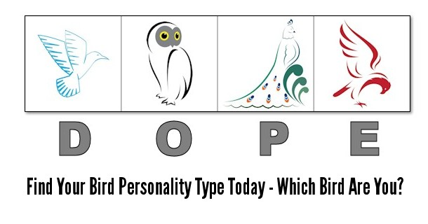 dope-bird-personality-test-banner-1a