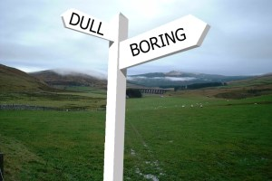 Crossroads between dull and boring