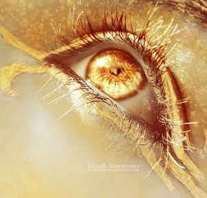 Eyes of Gold