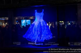 Dresses Tae gon KIM, Liberty, Lumiere London 16th January 2016 Images taken by Richard Washbrooke Photography