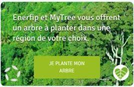 enerfip-mytree