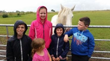 Feeding apples to the white horse (3)