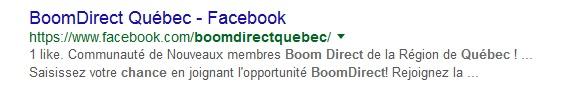 boom-direct-arnaque-ponzi-escroquerie-scam-41