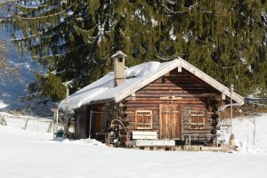 Winter-house-pel-housing
