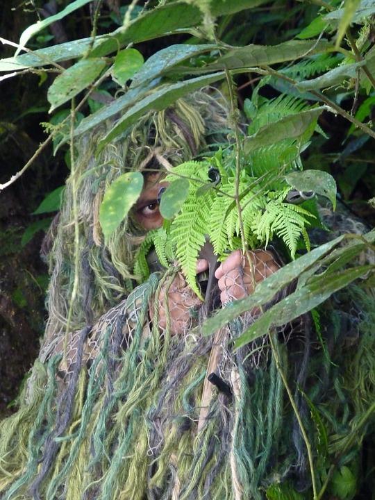 selva - ocultar