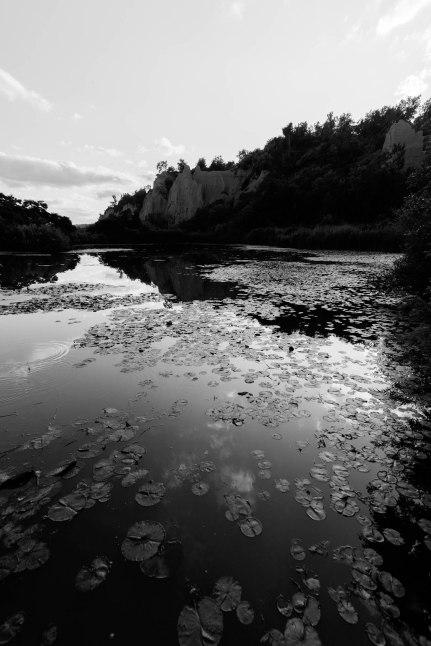 BW of still pond