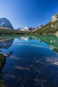A perfect opportunity for the polarizer