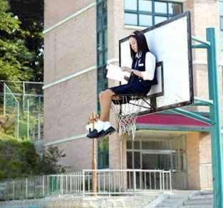 a98833_studying_9-basket-ball.jpg