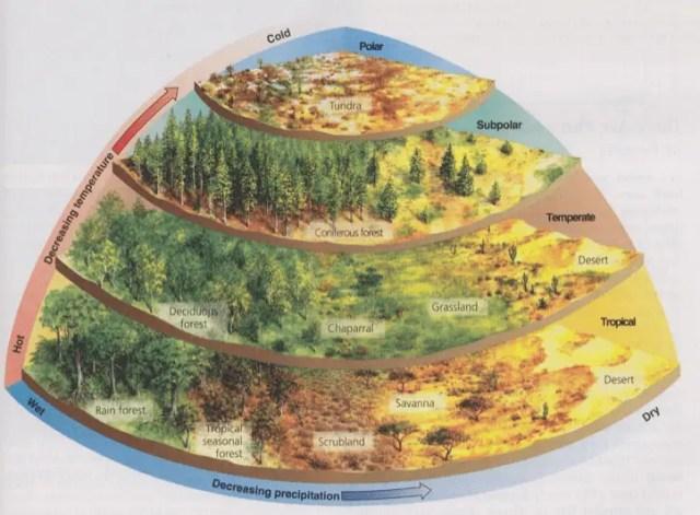 worldbuilding chart