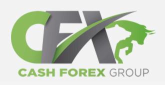 CashFX Group Securities Fraud