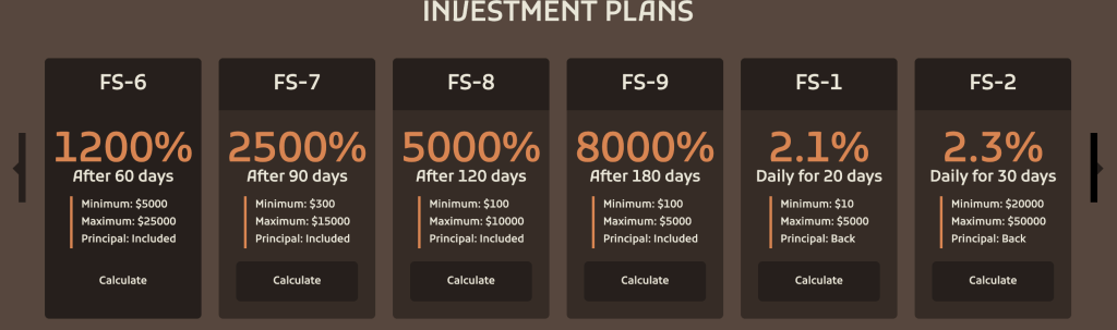 Finstorage investment plan
