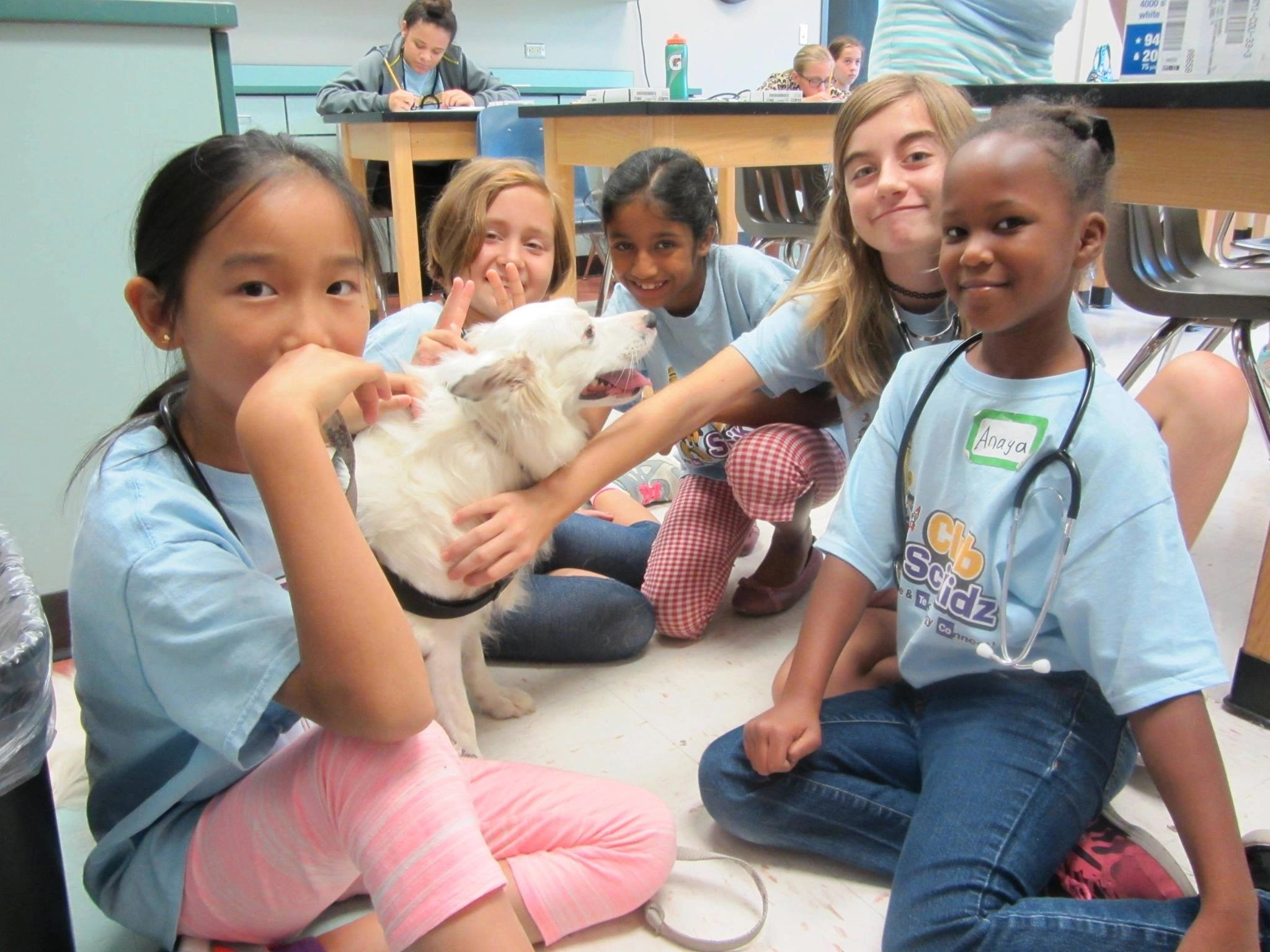 Veterinary Science Summer Camp Richmond Va Club Scikidz Richmond