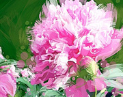 social painting Fresh Florals